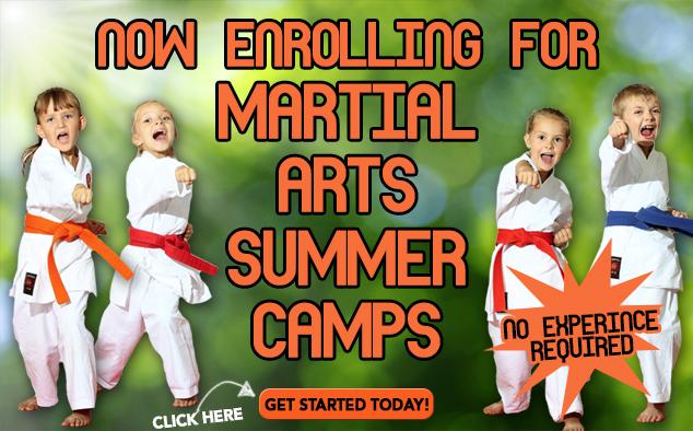 Karate Camps
